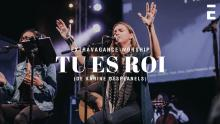 Embedded thumbnail for Tu Es Roi - Karine Desplanels - Acoustique